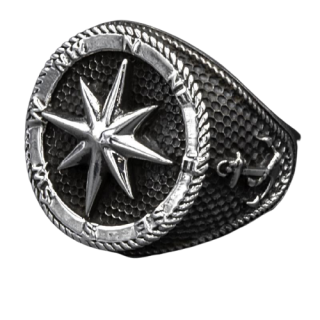 925 Sterling Silver Ring - Compass Needle